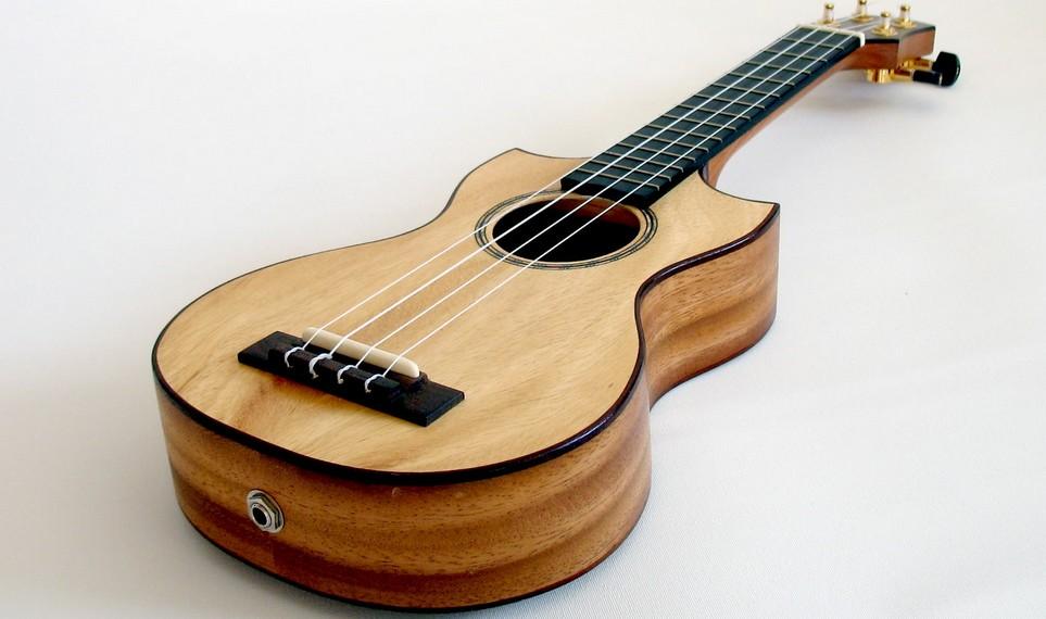 jakie ukulele dobre czy najlepsze